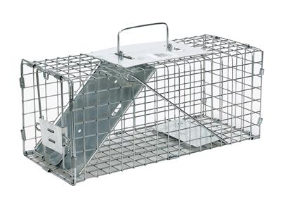 Where to find ANIMAL TRAP in Boise