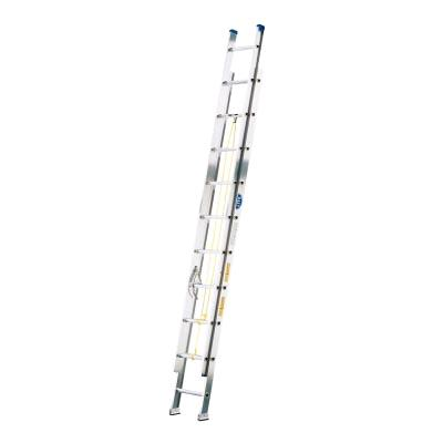 Where to find LADDER, EXT 40  ALUMINUM in Boise